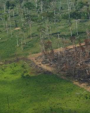 Governadores e empresas ajudam Brasil na COP