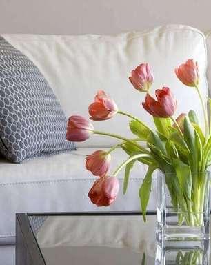 +59 Tipos de Flores Para Decorar e Colorir seu Jardim e sua Casa