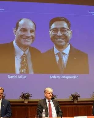 Nobel de Medicina: pesquisa sobre sensação de toque e temperatura é premiada