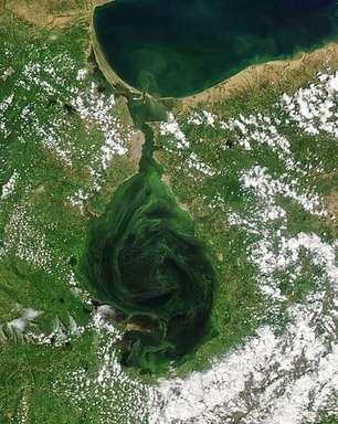 As imagens que mostram como maior lago da América do Sul está ficando verde, com consequências fatais