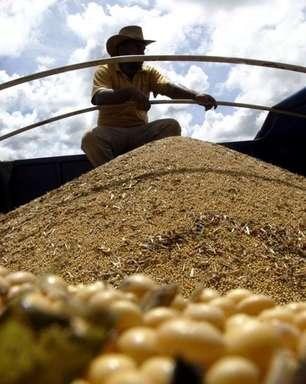 Exportação de soja do Brasil caminha para alta no mês ante 2020; carne recua com China