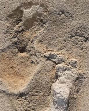 As pegadas pré-históricas que põem em xeque ideias sobre origem da humanidade