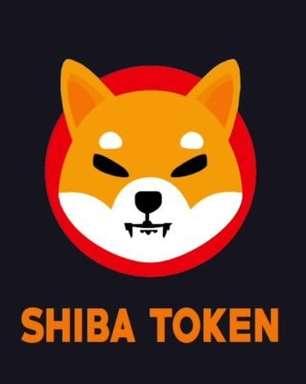 Shiba inu ultrapassa dogecoin e entra para top 10 das criptomoedas