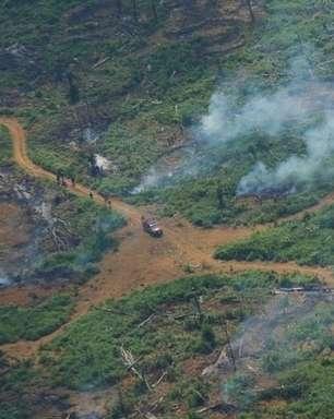 COP26: Na contramão do mundo, Brasil teve aumento de emissões de CO2 em ano de pandemia