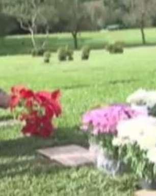 Fãs visitam túmulo 20 anos após a morte de Ayrton Senna