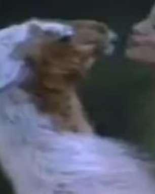 Após festa, Brunninha beija lhama na boca