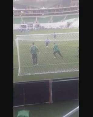 Leitor filma Palmeiras no Allianz Parque; envie seu vídeo
