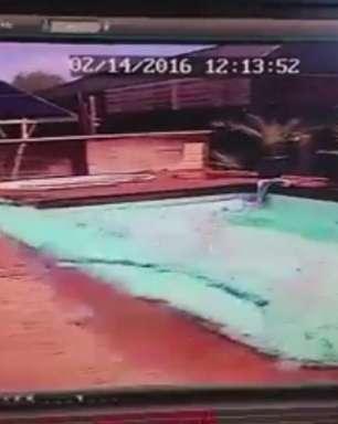 Vídeo mostra efeito de terremoto em piscina na Nova Zelândia