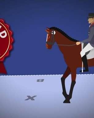 Vídeo explica regras do adestramento