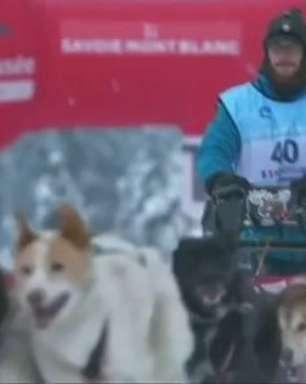 300 cães aceleram nos Alpes franceses em corrida de trenós