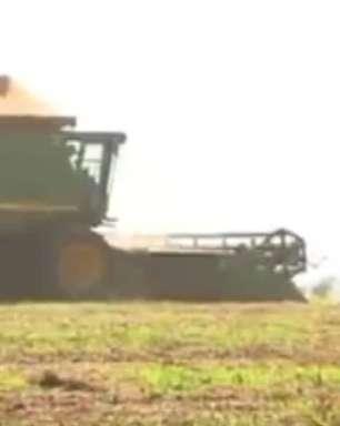 Top Agro: Exportações do agronegócio gaúcho subiram 5% em 2018