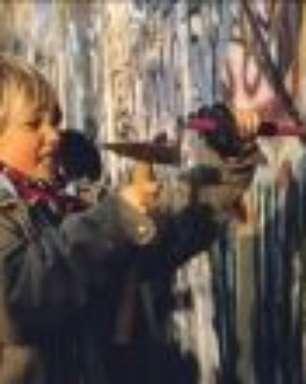 30 anos da queda do Muro de Berlim: como se deu um dos eventos mais simbólicos do século 20