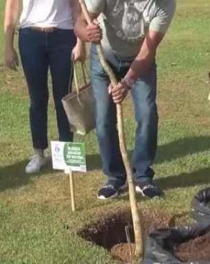 Plantio de árvores em homenagem às vítimas da Covid-19 é realizado em Foz