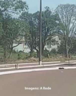 Vídeos flagram carros 'voando' em lombada de Ponta Grossa