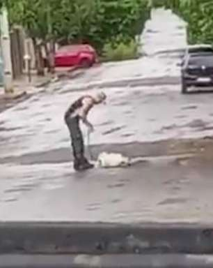 Vídeo: homem arrasta cachorro por corda em Ivaiporâ