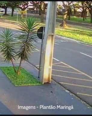 VÍDEO: Motorista perde o controle e derruba árvore em acidente no PR