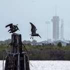 Nasa lança primeira missão espacial tripulada em 9 anos