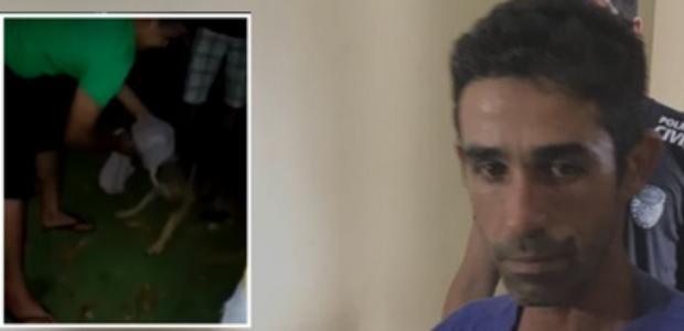 Lavrador é preso após mutilar genital de cão com estilete