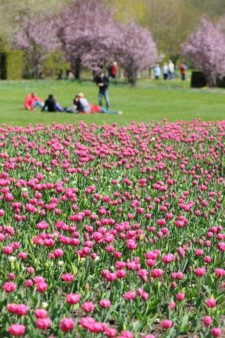 Britzer Garten (Berlim, Alemanha) criado para mostrar a natureza da