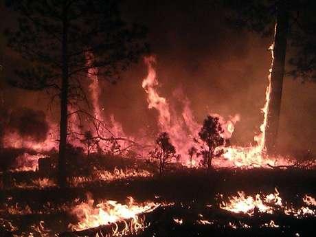 Un incendio forestal que arde sin control y es el más extenso en la historia de Nuevo México, sigue sin dar tregua y se propagaba este jueves hacia todas direcciones.