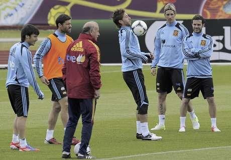 Del Bosque dando indicaciones a sus jugadores previo al choque ante Irlanda