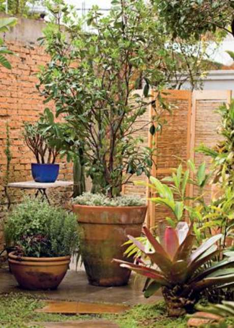 O biombo de bambu separa o jardim do corredor e se funde ao projeto paisagístico com harmonia