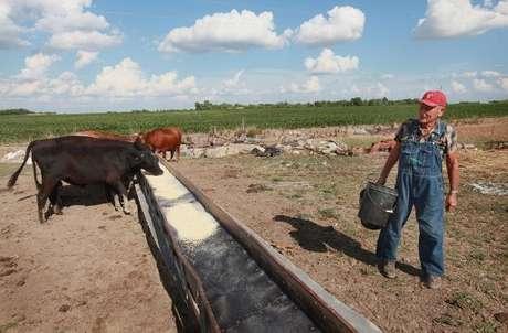 El calor y la sequía que afectan a la zona central de Estados Unidos elevaron el miércoles los precios de los granos a niveles récord debido a que las cosechas se marchitaron y aumentaron las preocupaciones sobre alzas en los precios de los alimentos y combustibles en el mayor exportador mundial de comida.