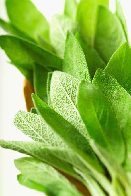 As ervas podem ser usadas sozinhas ou combinadas a temperos prontos; além de sabor, são responsáveis por dar aroma aos pratos