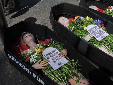 Activistas por los derechos de los animales (Peta) protestaron en Sidney, Australia, introduciéndose semidesnudos en unos ataúdes simulados.