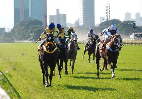 O Jockey Club de São Paulo, como todo bom hipódromo, é o grande palco das corridas de cavalo na cidade (acima). Quem gosta de apostar nesse tipo de evento, no entanto, tem outros bons motivos para visitar o local: ali ficam dois bares e um restaurante que estão entre os melhores estabelecimentos da capital paulista
