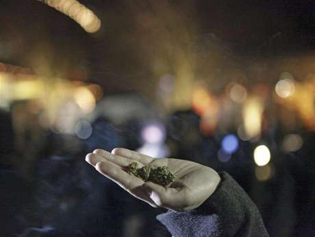 Marijuana is seen in the hand of a person after the law legalizing the recreational use of marijuana went into effect in Seattle, Washington December 6, 2012.
