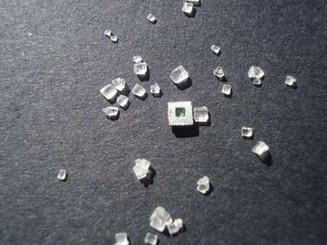 Wesley tira foto de sua criação ao lado de cristais de açúcar
