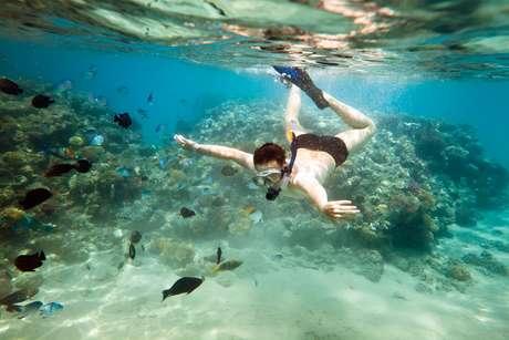 A prática de snorkel é perfeita para conhecer o mundo subaquático sem se afastar muito da superfície