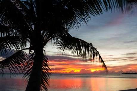 Ilhas são sinônimo de paisagens impressionantes, riqueza cultural e sabores exóticos