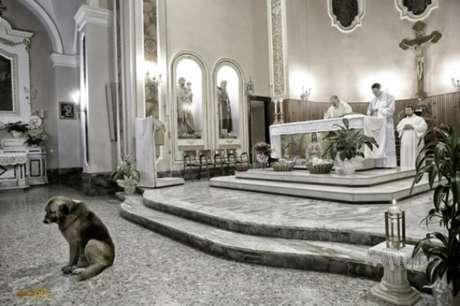 Cão Ciccio vai diariamente à Igreja Santa Maria Assunta desde que sua dona morreu