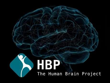 Projeto prevê mapeamento das conexões do cérebro para entender o que desencadeia pensamentos e emoções