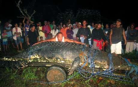 En esta fotografía de archivo del 4 de septiembre de 2011, varias personas observan a un enorme cocodrilo recién capturado en la localidad de Bunawan en la provincia filipina de Agusán del Sur. El reptil, adoptado por la comunidad, le dio renombre a Bunawan al ser considerado como el cocodrilo más grande del mundo en cautiverio. El cocodrilo murió el domingo 10 de febrero de 2013 y dejó a Bunawan sumido en la tristeza. En la imagen, el alcalde Edwin Cox Elorde intenta mostrar la magnitud del reptil.