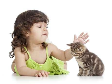 <p>Ter contato com pet no primeiro ano de vida reduz risco de alergia</p>