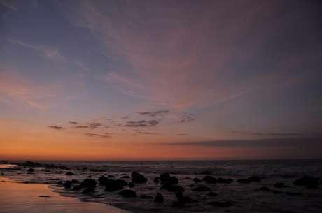 <p>É possível ver passáros, tartarugas, golfinho e baleias de algumas praias da América do Sul</p>