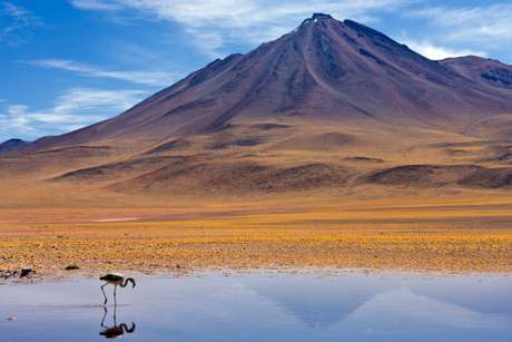 <p>3-<strong> Desierto de Atacama</strong>, elegido como el tercer lugar natural más atractivo del mundo. Ubicado en Chile, es el desiertomás seco del mundo, pueden encontrarse en élsalares, termas y geisers, grandes minas de cobre y otros minerales.</p>
