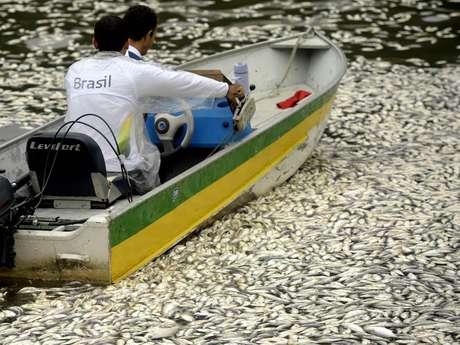 <p>Membro da Confederação Brasileira de Remo passa de barco por peixes mortos</p>