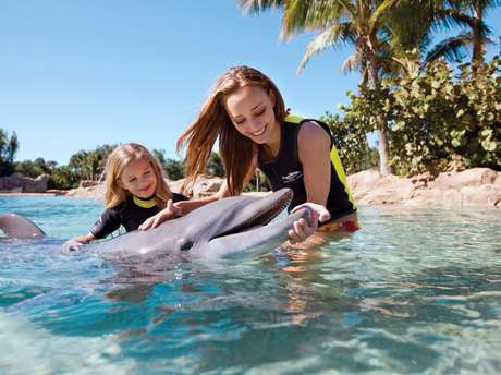 <p>Discovery Cove</p>