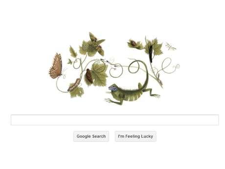 <p>Maria Sibylla Merian viajou ao Suriname e registrou detalhes de insetos, publicados na volta à Europa</p>
