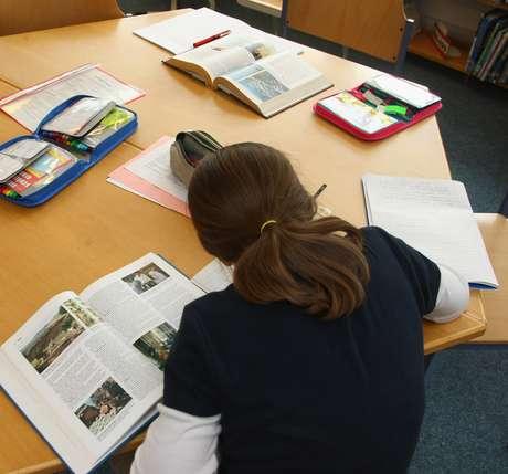 Segundo o pesquisador, a lição de casa tem se baseado mais em uma repetição dos conteúdos