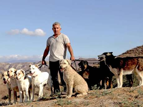 <p>'César Millán' recuerda cómo su capacidad de lidiar con perros lo convirtieron en 'El Encantador de Perros'.</p>