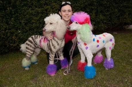 <p>Mulheres britânicas usam maquiagem e tosa para fazer transformações em cães</p>