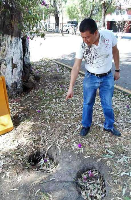 Armando Martínez, vecino de Echegaray, muestra los agujeros en donde supone habitan los roedores.