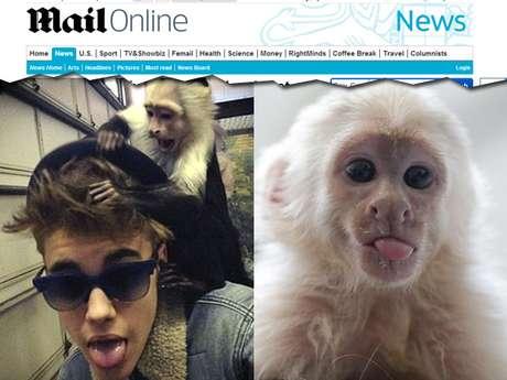 Bieber não vai mais ficar com o macaco Mally