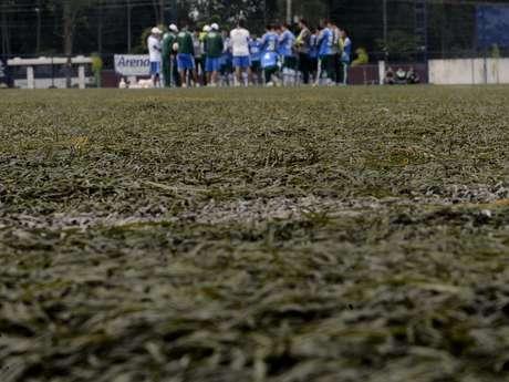 Palmeiras treinou nesta quarta em grama artificial no Clube Nacional