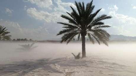<p>Fotos da neve no deserto foram postadas em redes sociais</p>